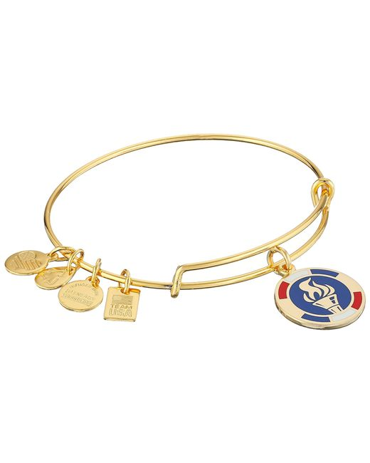 ALEX AND ANI | Blue Team Usa Flame Epoxy Expandable Wire Bangle | Lyst