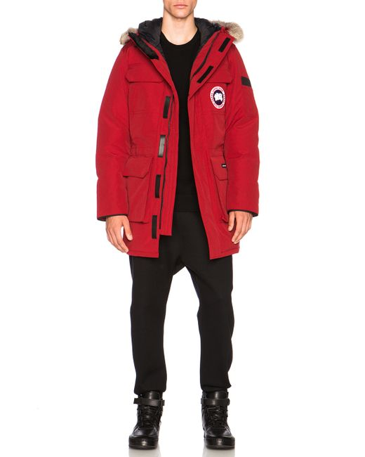 canada goose for sale gumtree
