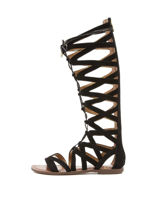Sam Edelman Gena Tall Gladiator Sandals In Black
