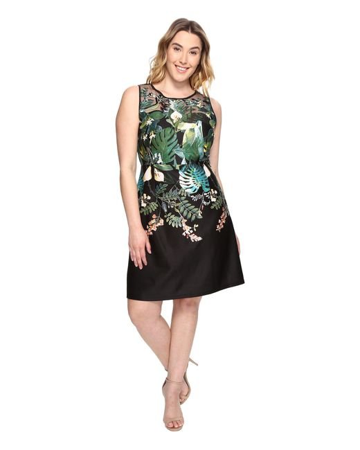 Adrianna Papell | Black Plus Size Leafy Oasis Scuba A-line Dress With Laser Cut Neckline | Lyst