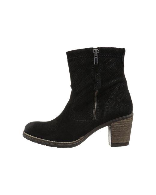 Taos Footwear Standout vUcGI9