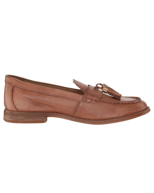 f04bbe10cdf Lyst - Hush Puppies Chardon Penny in Brown - Save 40%