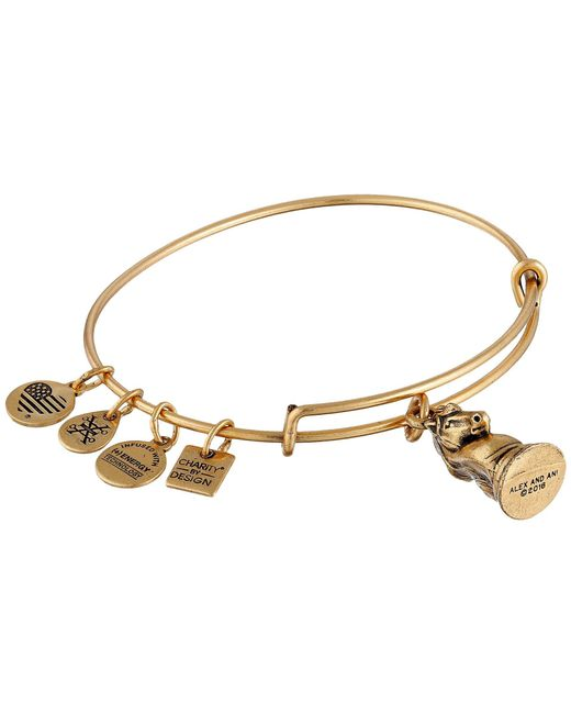 ALEX AND ANI - Metallic Charity By Design - The Knight Charm Bangle - Lyst