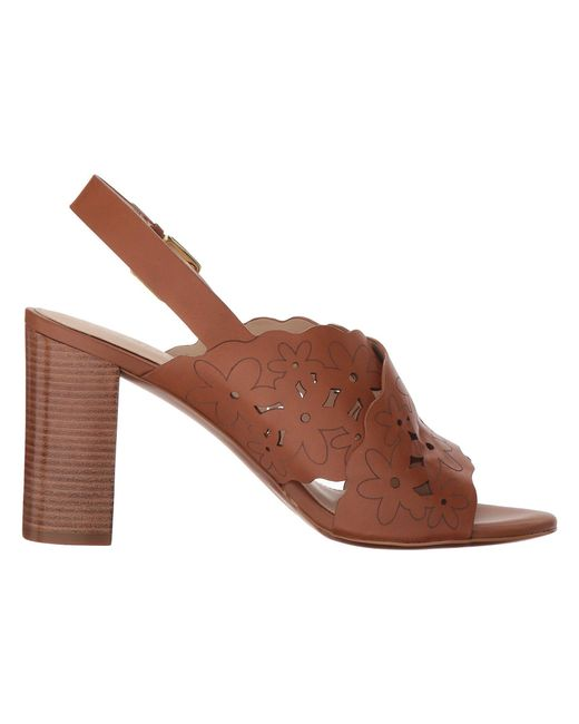 Indra High Floral Sandal II Cole Haan g5aaOgvXyF