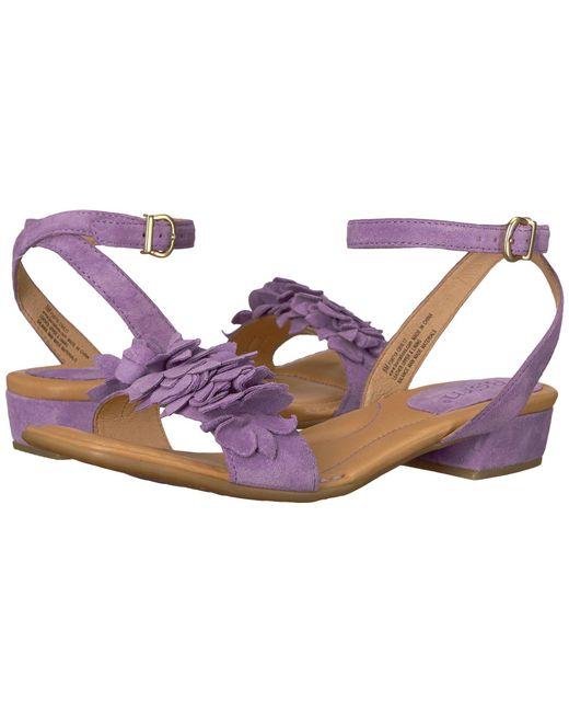 Born - Purple Bouvet - Lyst