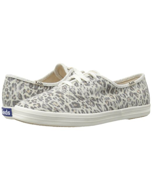 ... Keds | Multicolor Champion Jersey Leopard | Lyst ...