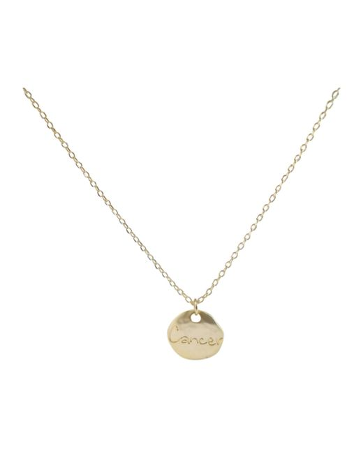 Ziba Metallic Layered Cancer Necklace