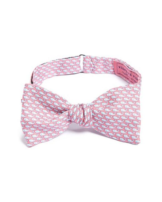 Vineyard Vines | Pink Whale Print Silk Bow Tie for Men | Lyst
