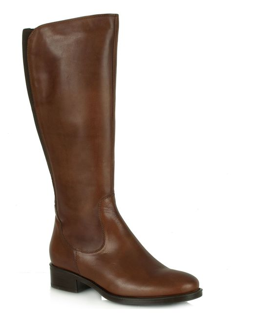daniel selfton knee high boots in brown lyst
