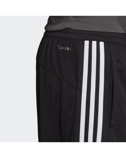 adidas Cool Shorts Jungen schwarz