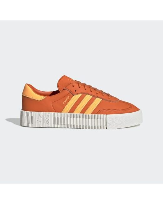 adidas scarpe sambarose