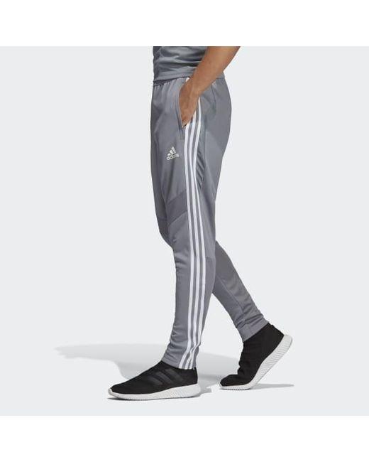 Men's Gray Tiro 19 Training Pants