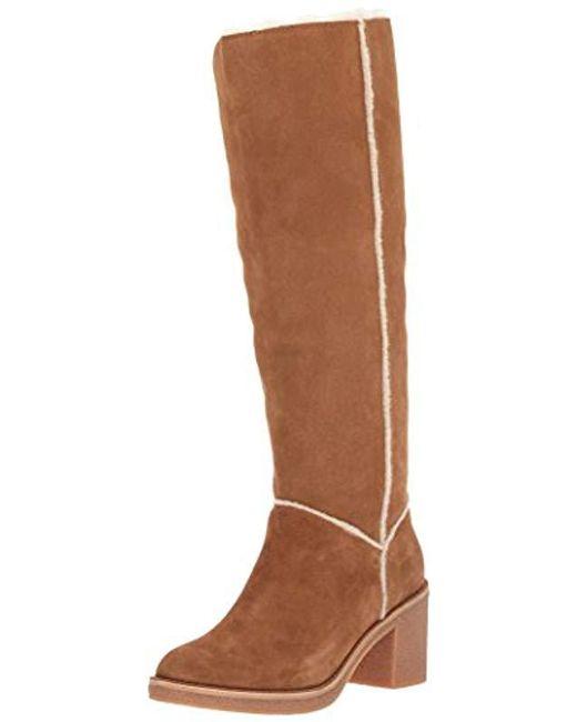 81ae40e6af6 Women's Brown Kasen Tall Boot
