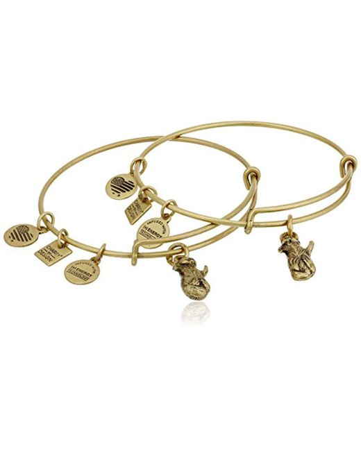ALEX AND ANI - Metallic S Charity By Design Side By Side Set Of 2 Expandable Wire Bangles - Lyst