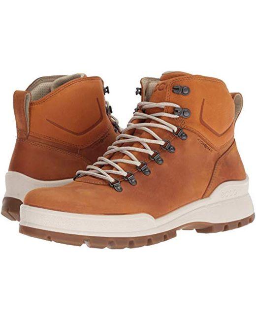 b6a0b89fbef Men's Brown Track 25 High Rise Hiking Shoes