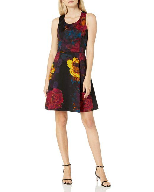RACHEL Rachel Roy Black Floral Scuba Fit And Flare Dress