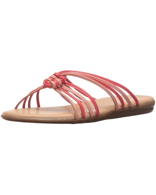 Aerosoles Pink Health Chlub Slide Sandal