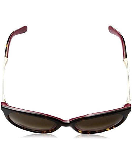 ec6ceca753 Lyst - Kate Spade Amaya Sunglasses in Brown - Save 70%
