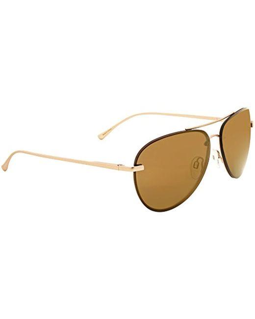 88f22d2a7ab Vera Bradley - Multicolor Deanna Polarized Aviator Sunglasses