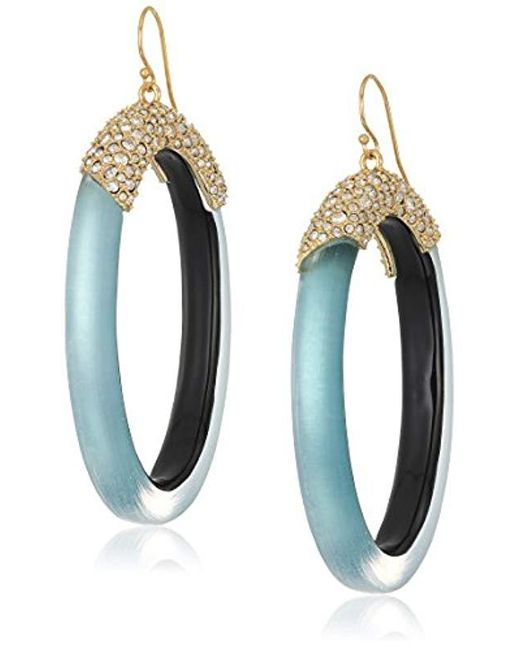 Alexis Bittar - Multicolor Pave And Oval Lucite Hoop Ear Wire Drop Earrings - Lyst