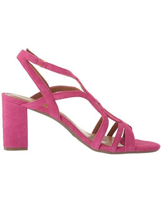 a57895a008012 Women's Pink Early Bird Heeled Sandal