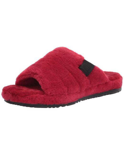 Ugg Red Slipper for men