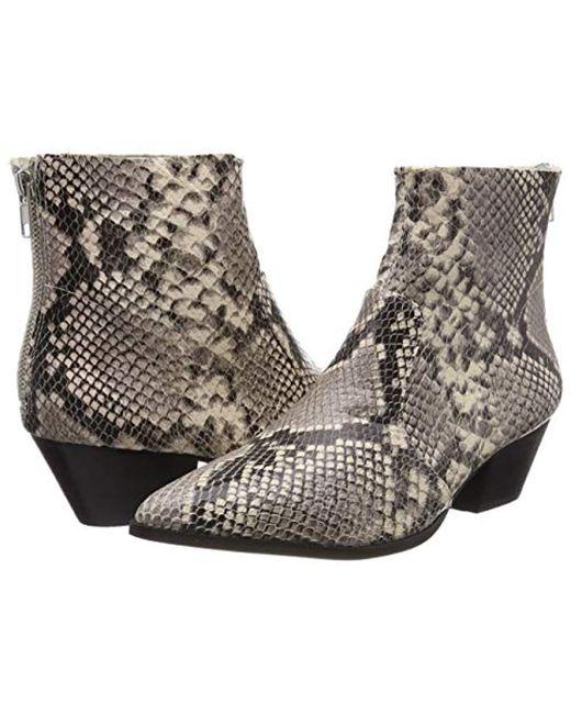 e3efc762796 ... Steve Madden - Multicolor Cafe Ankleboot (snake) Ankle Boots - Lyst ...