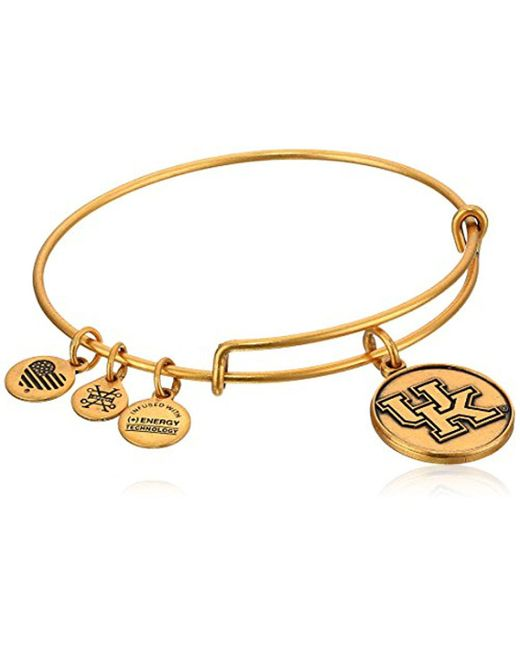 ALEX AND ANI - Metallic University Of Wisconsin Rafaelian Bangle Bracelet - Lyst