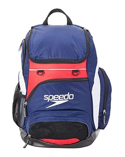 Speedo Teamster Rucksack, Erwachsene in Blue für Herren