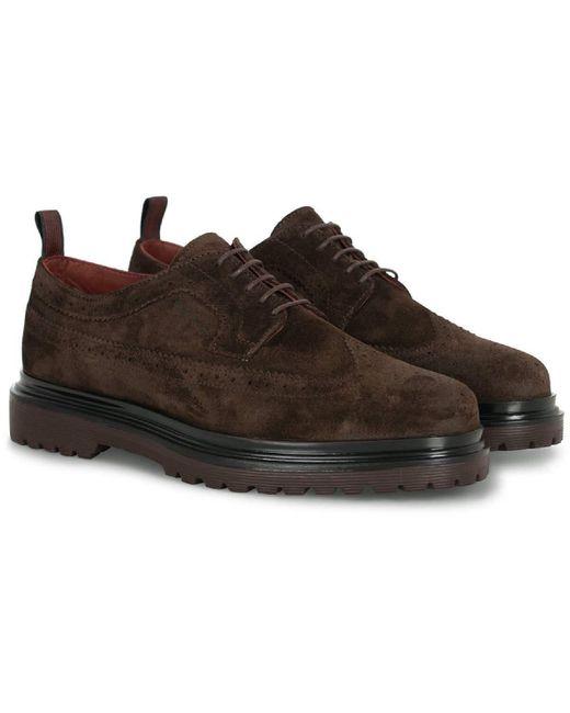 Gant Footwear Beaumont Brogues in Brown für Herren