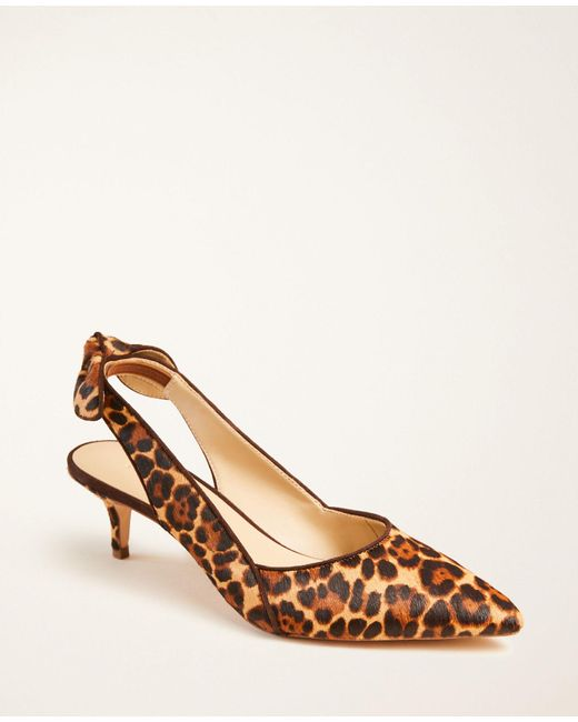 Ann Taylor Brown Tanja Leopard Print Haircalf Slingback Bow Pumps