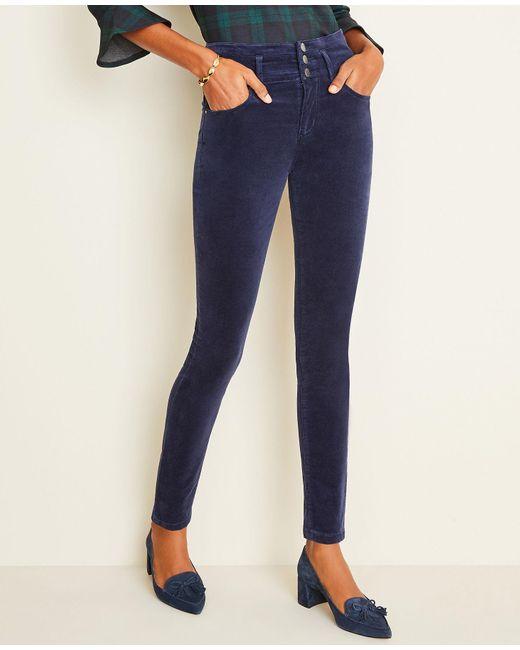 Ann Taylor Blue High Rise 5-pocket Velvet Pants