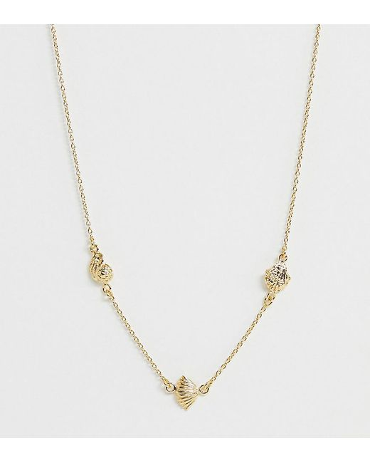 ASOS Metallic Sterling Silver With Gold Plate Necklace With Mixed Shell Pendants