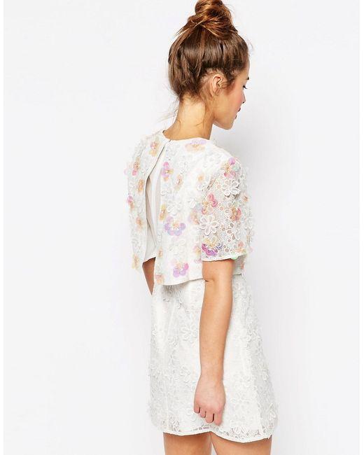 Asos Salon 3d Floral Lace Embroidered Crop Top Mini Dress