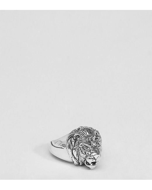 ASOS | Metallic Plus Sterling Silver Lion Head Ring for Men | Lyst