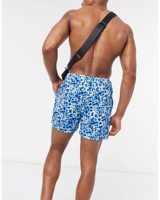 Шорты Для Плавания С Леопардовым Принтом Синего Цвета -мульти South Beach для него, цвет: Blue
