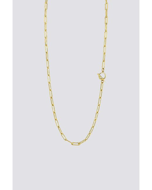 Gabriela Artigas Metallic Rectangular Link Chain Necklace With Tusk Clasp
