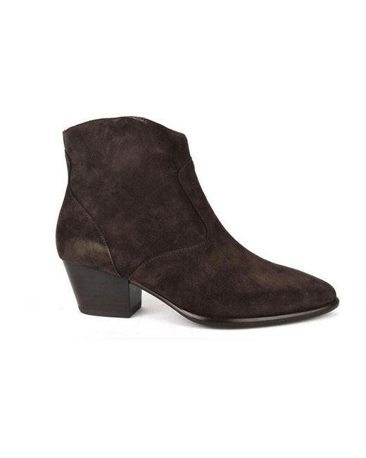 Ash Heidi Bis Wood Brown Suede Ankle Boots