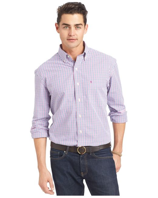 Izod tattersall button down shirt in purple for men for Izod button down shirts