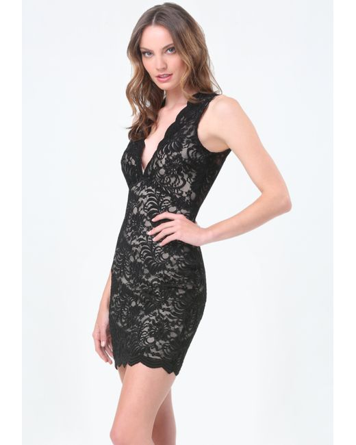 Bebe scallop lace plunge dress in black lyst for Bebe dresses wedding guest