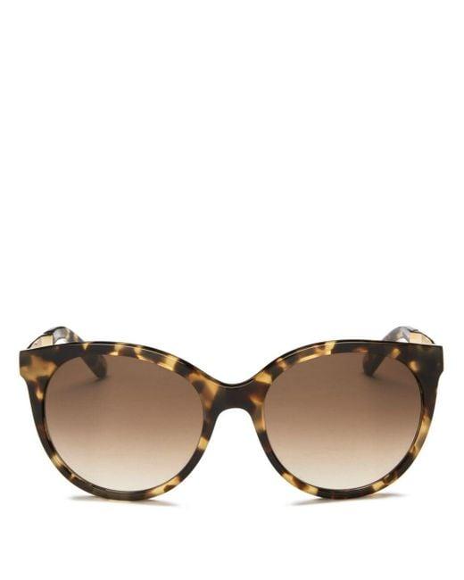Kate Spade Brown Women's Amaya Cat Eye Sunglasses
