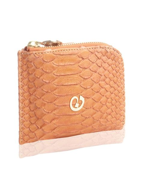 Nada Sawaya   Orange Medium Zip Around Python Wallet   Lyst