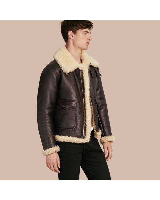 Burberry Shearling Aviator Jacket In Multicolor For Men Lyst