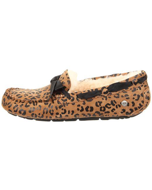 Ugg Dakota Leopard Bow In Brown Lyst