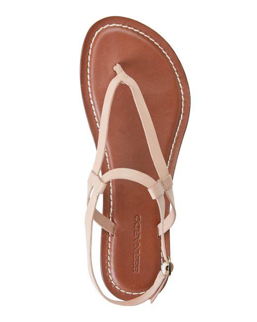 Bernardo Blush Merit Flat Thong Sandals In Pink Blush