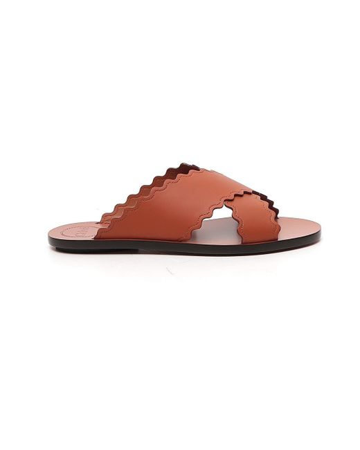 Chloé Brown Scalloped Edge Crossover Sandals