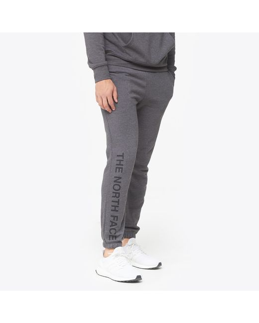 The North Face Gray Half Dome Pants for men