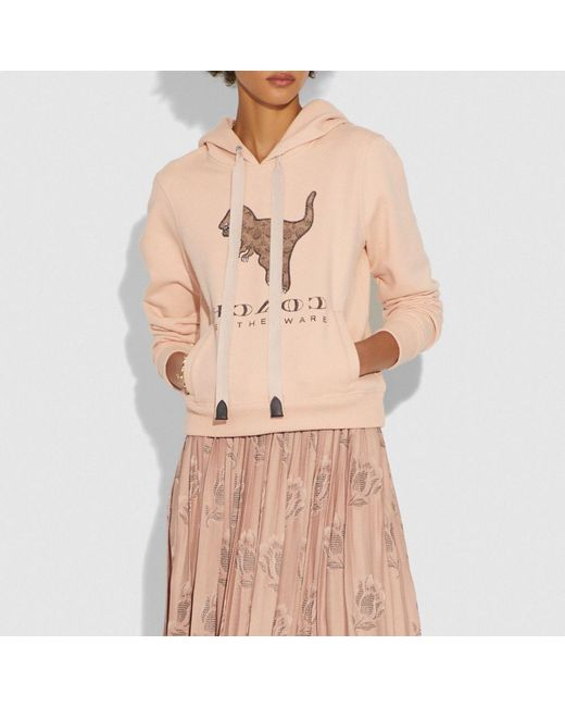 ab621312f9 Women's Pink Signature Rexy Sweatshirt