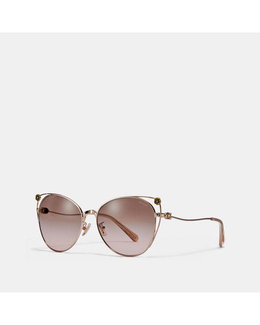 50f5aa2dfdf Lyst - COACH Tea Rose Cat Eye Open Sunglasses in Pink