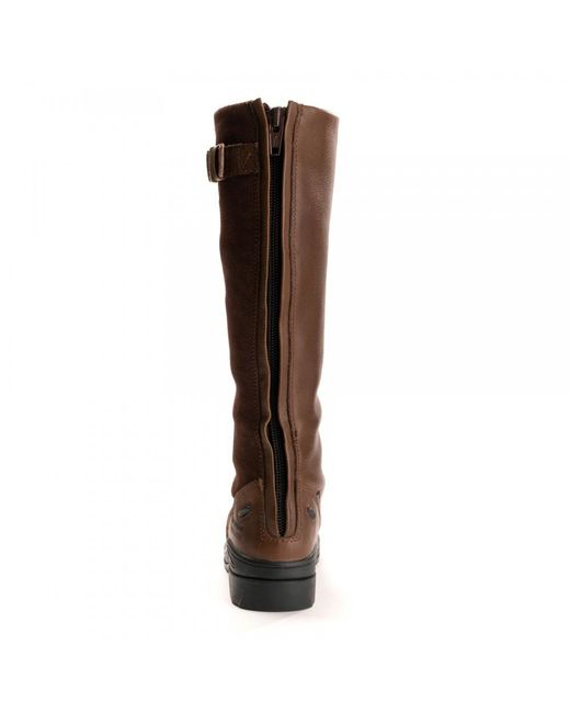 44d90df4444 Ariat Coniston H2o Ladies Tall Boot in Brown - Lyst